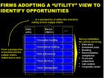 firms adopting a utility view to identify opportunities