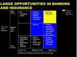 large opportunities in banking and insurance