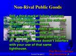 non rival public goods