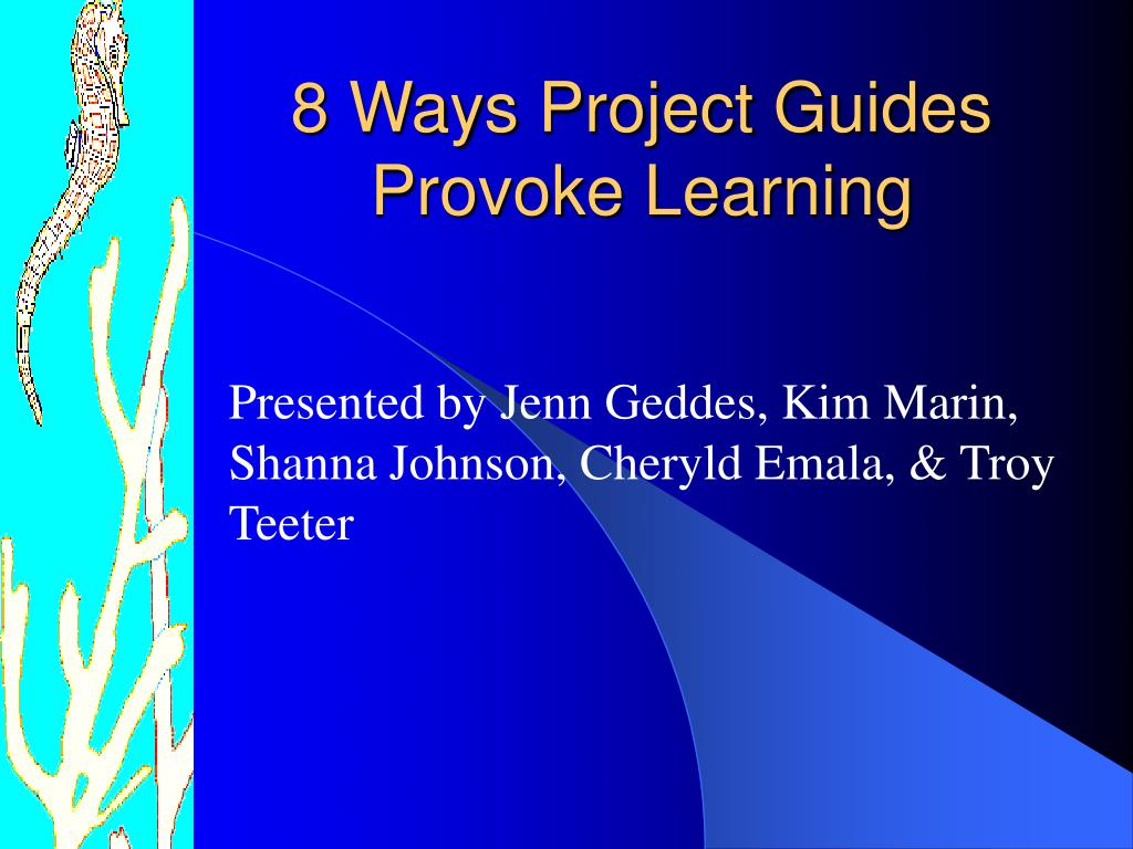 8 ways project guides provoke learning l.