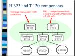h 323 and t 120 components