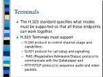 terminals53