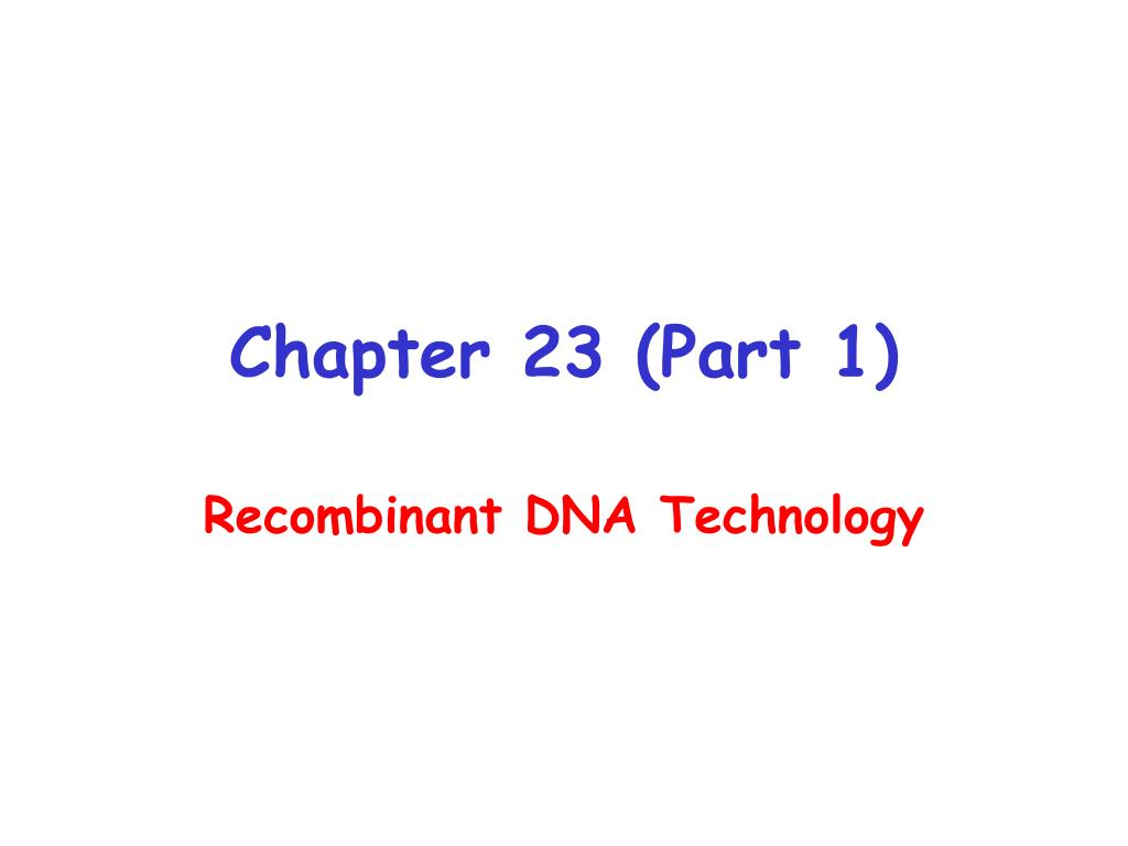 Chapter 23 (Part 1)