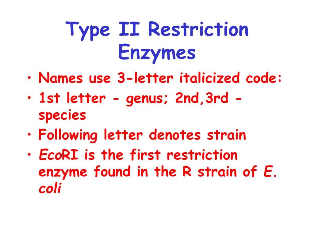 Type II Restriction Enzymes