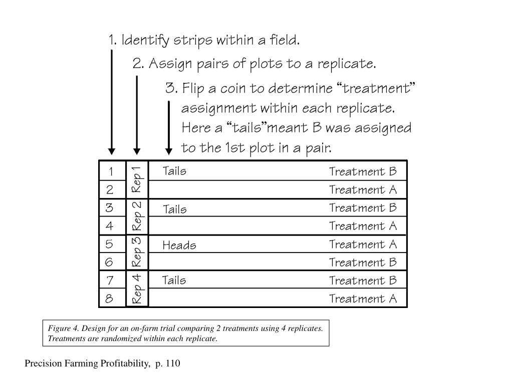Figure 4. Design for an on-farm trial comparing 2 treatments using 4 replicates. Treatments are randomized within each replicate.