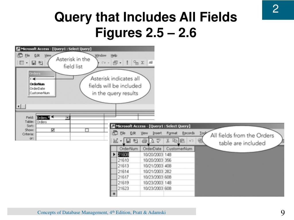 Query that Includes All Fields