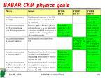 babar ckm physics goals