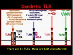 dendritic tlr6