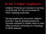 in the t helper lymphocyte20