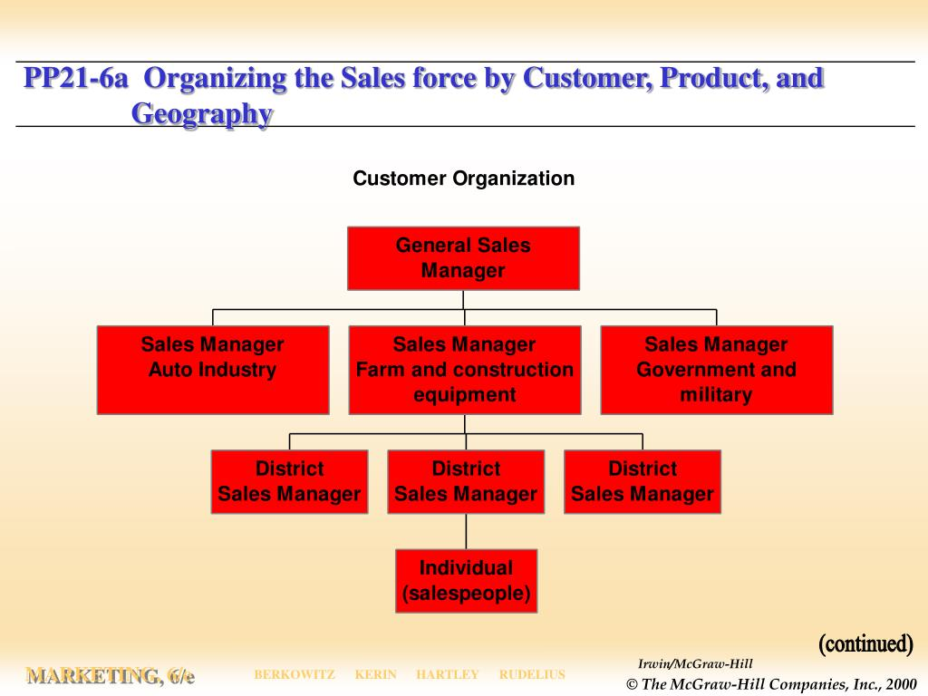 siebel systems organizing for the customer