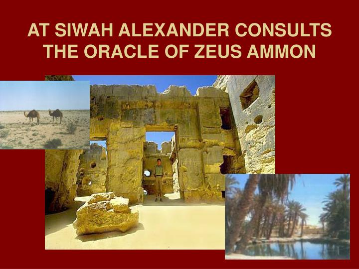 AT SIWAH ALEXANDER CONSULTS