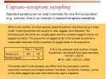 capture recapture sampling