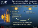 deposit insurance risk assessment monitoring and intervention process