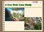 a one slide case study