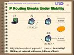 ip routing breaks under mobility