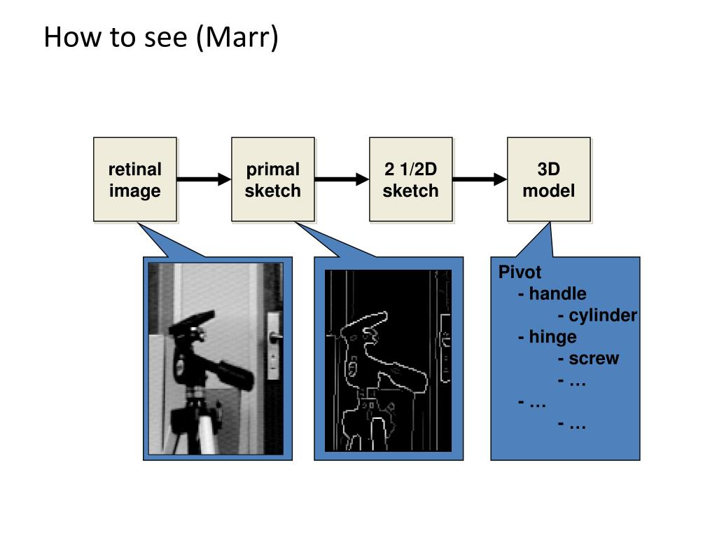 How to see (Marr)