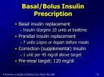 basal bolus insulin prescription