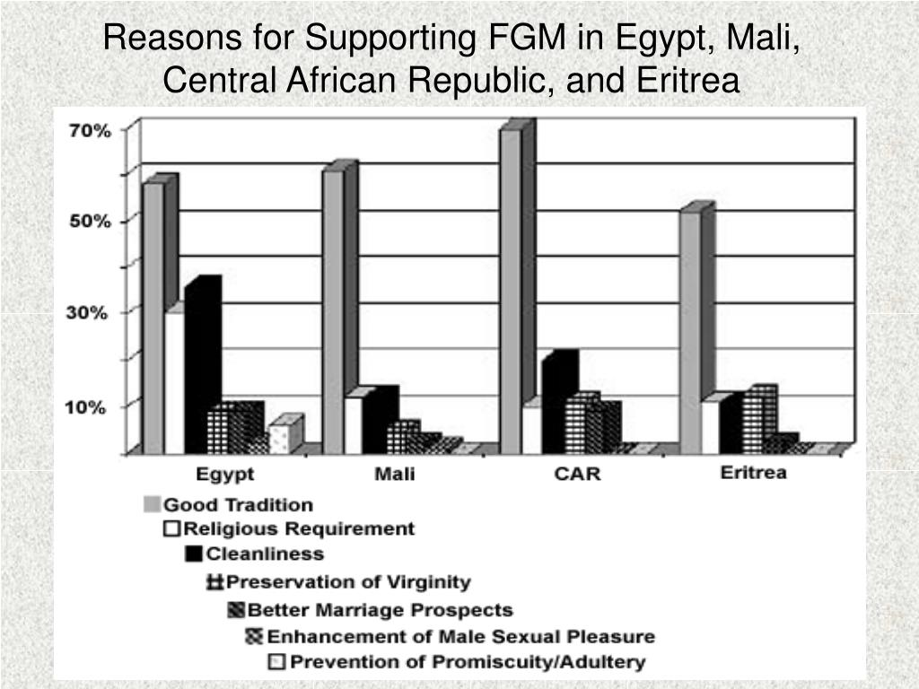Reasons for Supporting FGM in Egypt, Mali, Central African Republic, and Eritrea