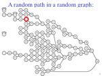 a random path in a random graph13