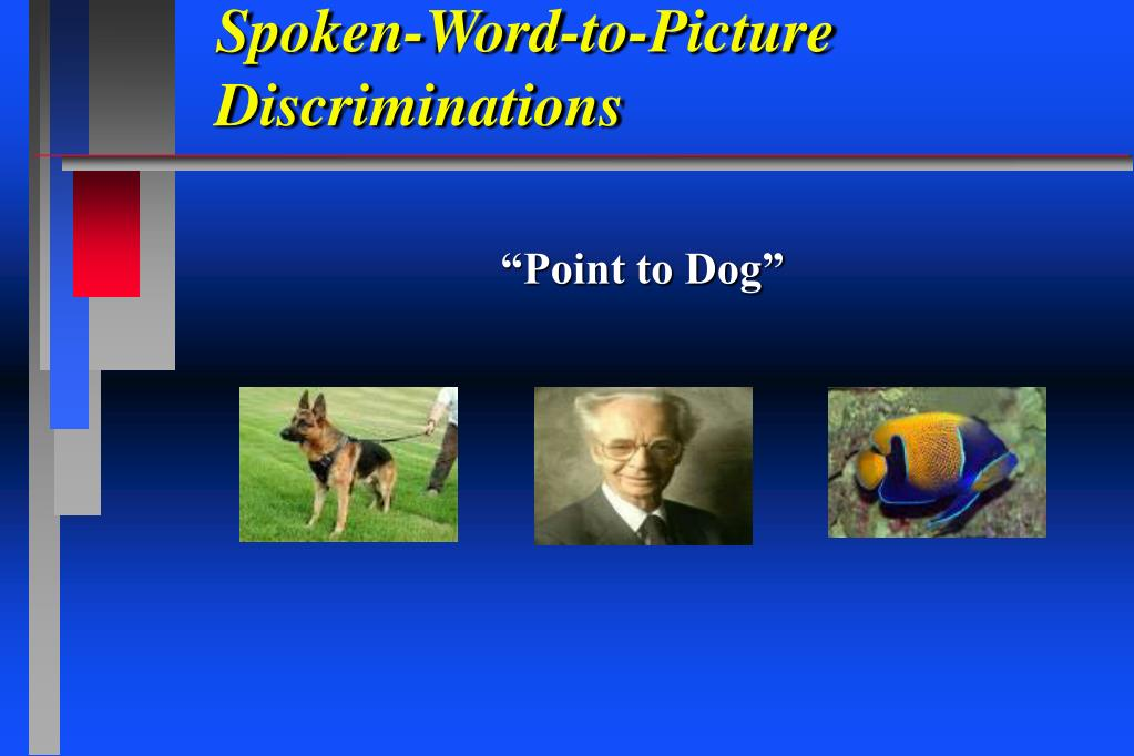 Spoken-Word-to-Picture Discriminations