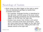 neurology of autism17