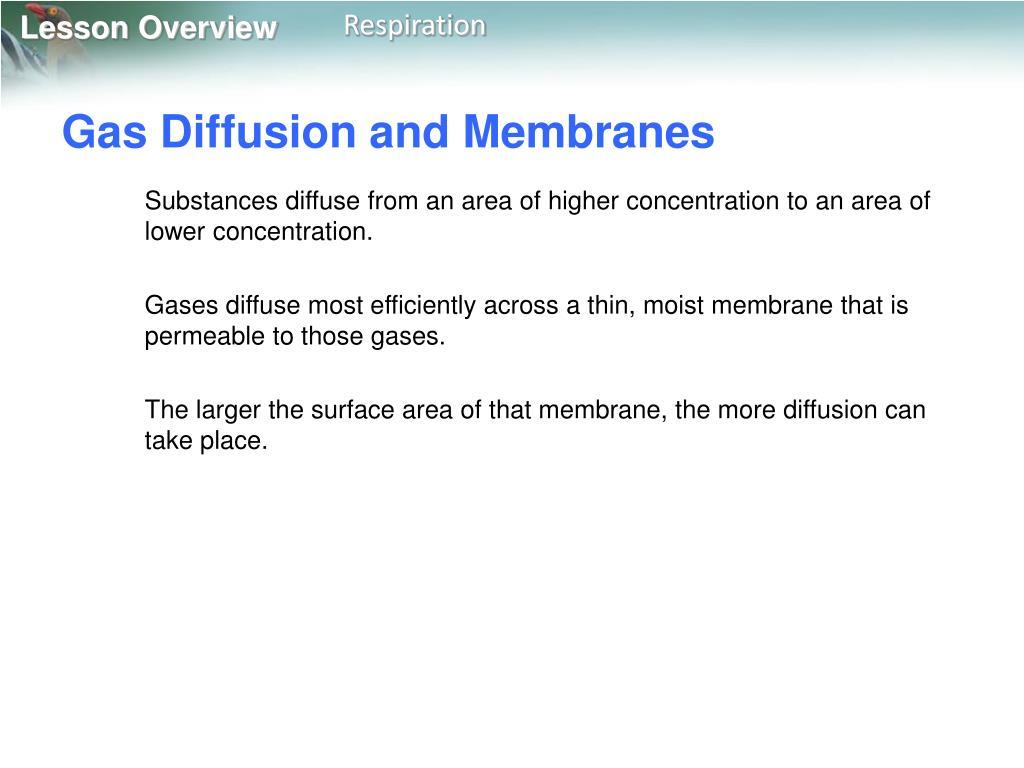 Gas Diffusion and Membranes
