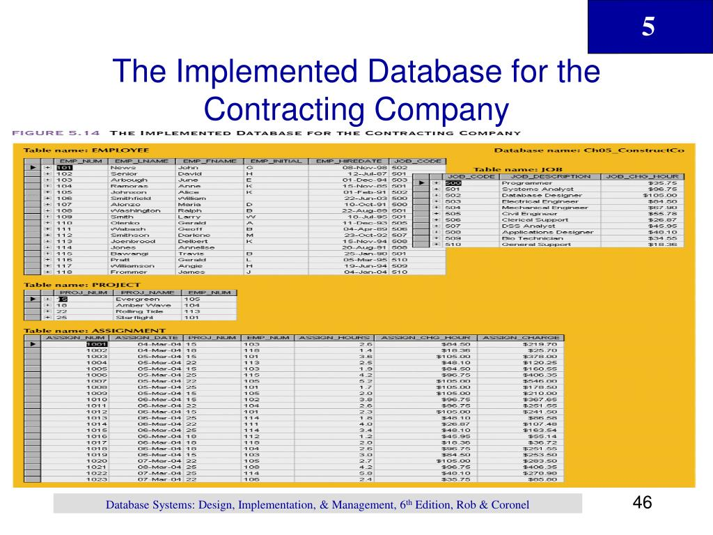 The Implemented Database for the Contracting Company