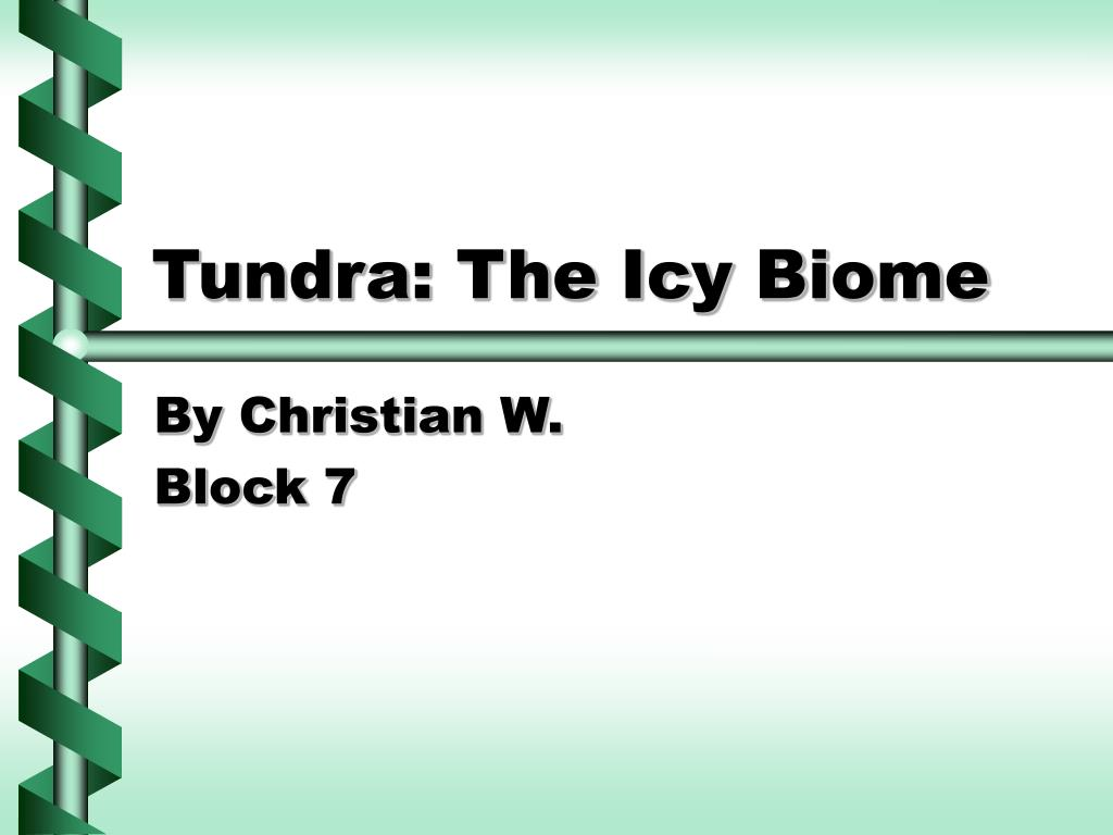 tundra the icy biome l.