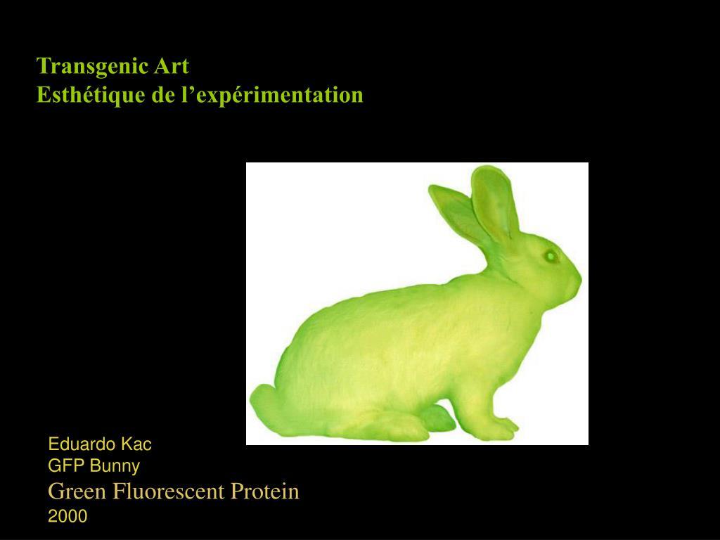 Transgenic Art