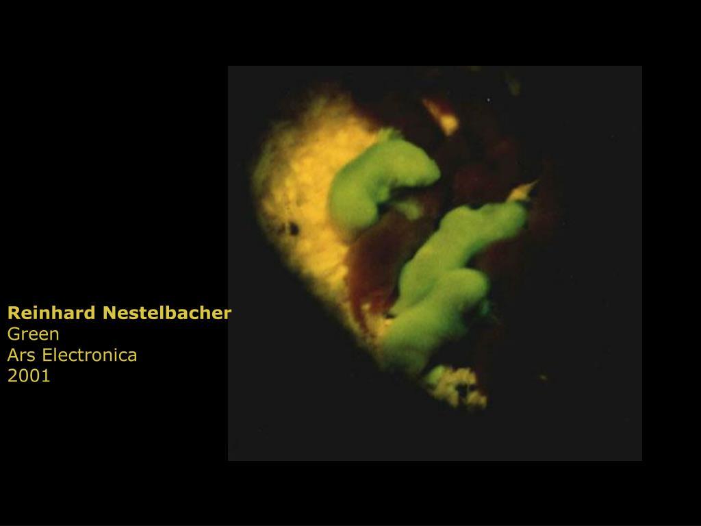 Reinhard Nestelbacher