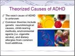 theorized causes of adhd