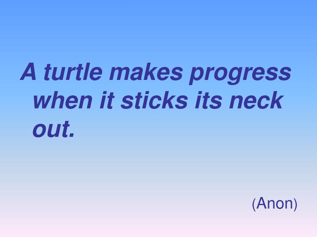 A turtle makes progress when it sticks its neck out.