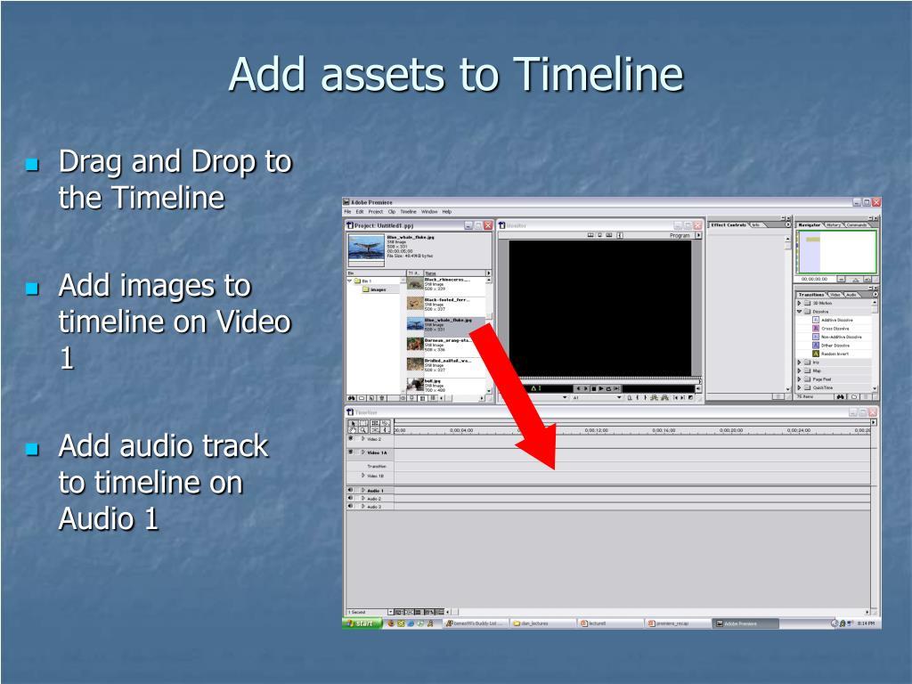 Add assets to Timeline