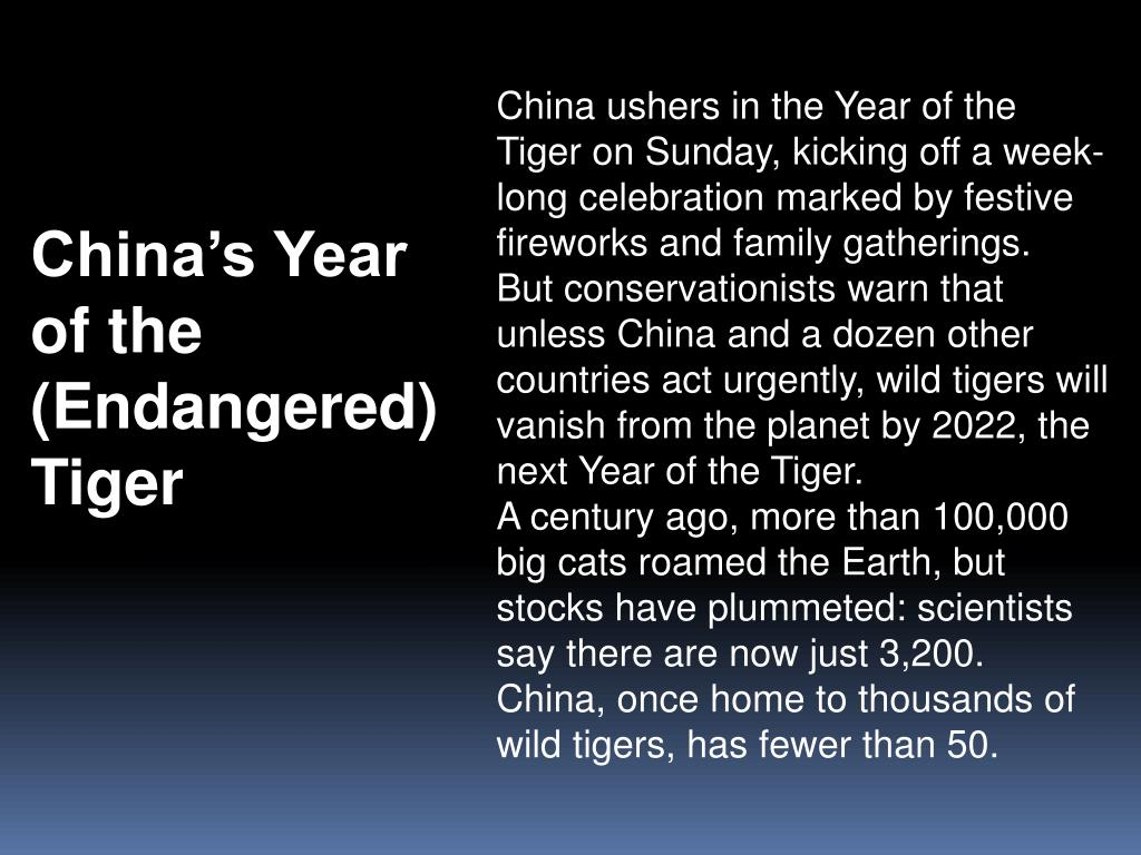 China ushers in the Year of the Tiger