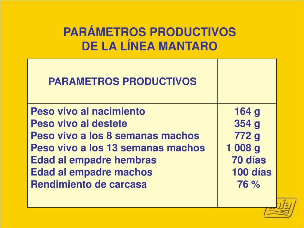 PARÁMETROS PRODUCTIVOS