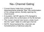 na channel gating