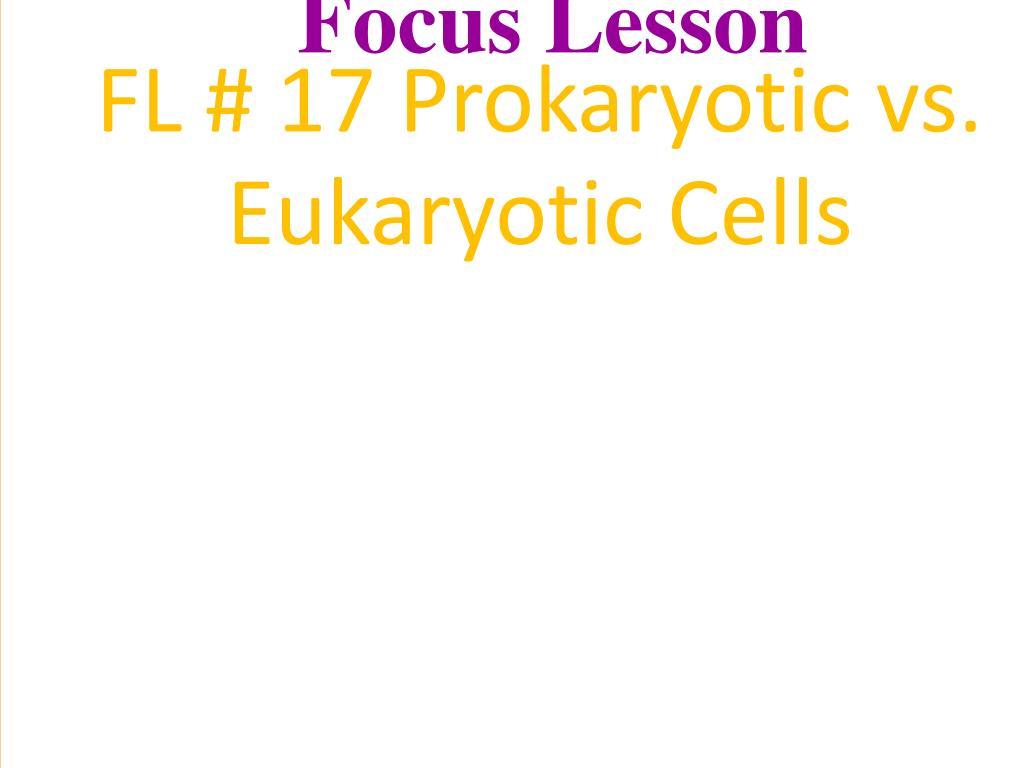 Ppt Two Major Divisions Of Cells Prokaryotic Bacteria Vs Eukaryotic Plant Animals Fungi Protists Powerpoint Presentation Id753902