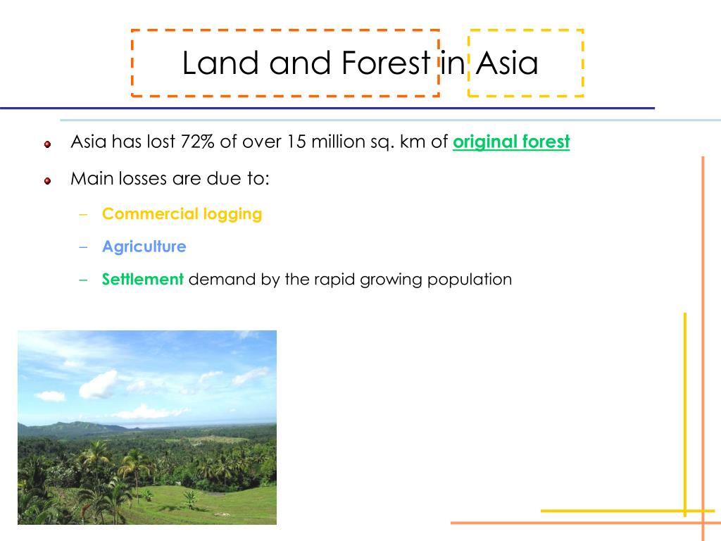 Land and Forest in Asia