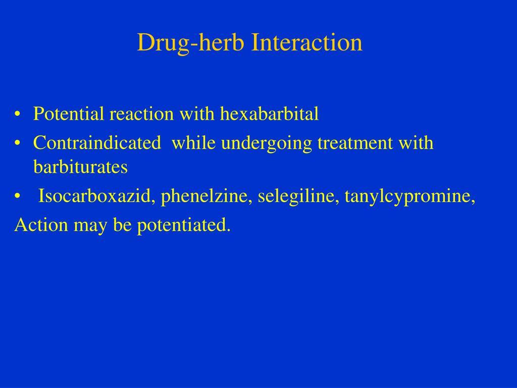 PPT - Kava-kava (Piper methysticum) PowerPoint Presentation