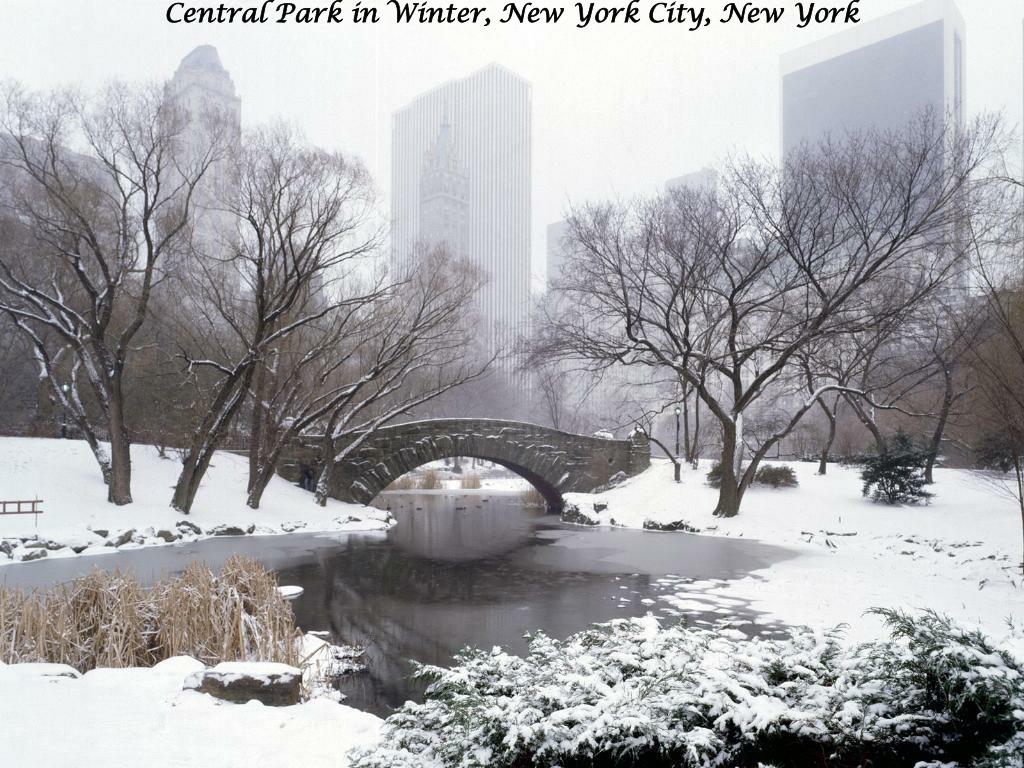 Central Park in Winter, New York City, New York