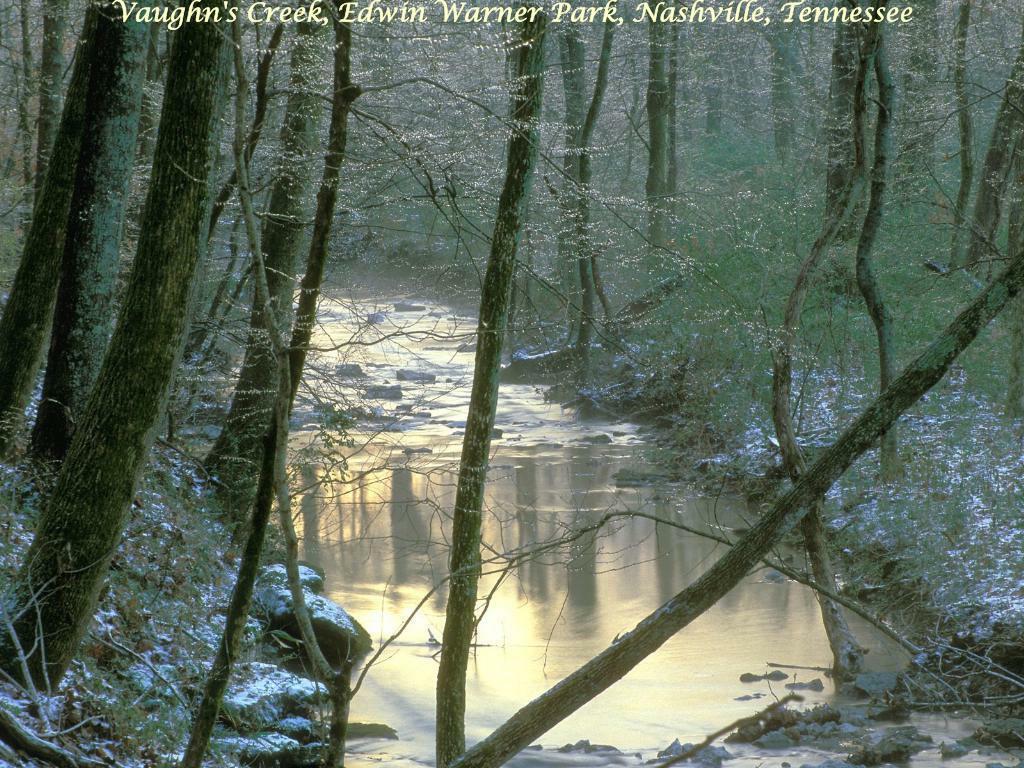 Vaughn's Creek, Edwin Warner Park, Nashville, Tennessee
