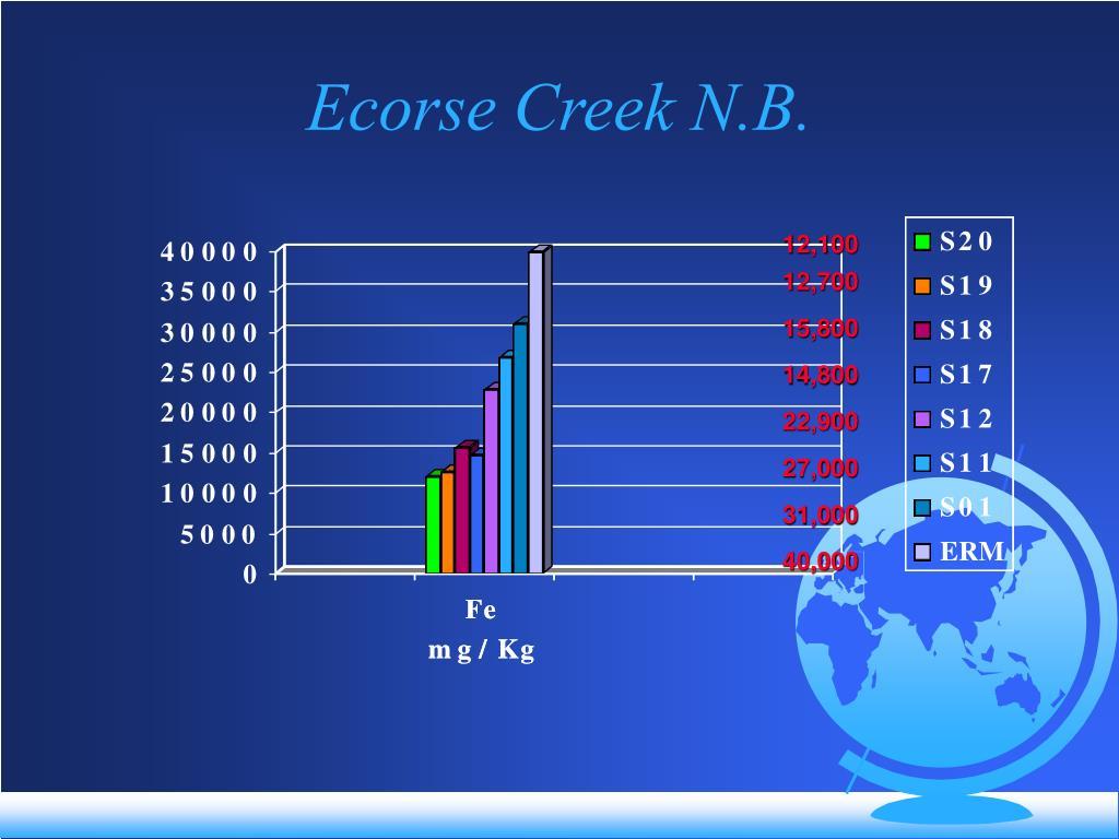 Ecorse Creek N.B.