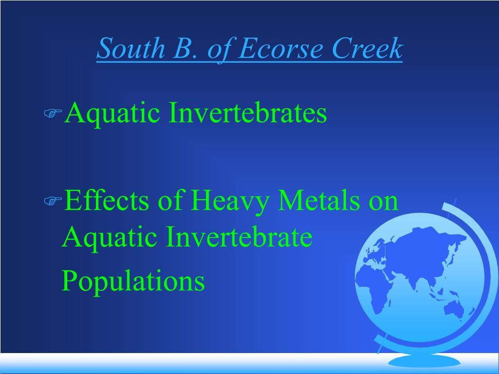 South B. of Ecorse Creek