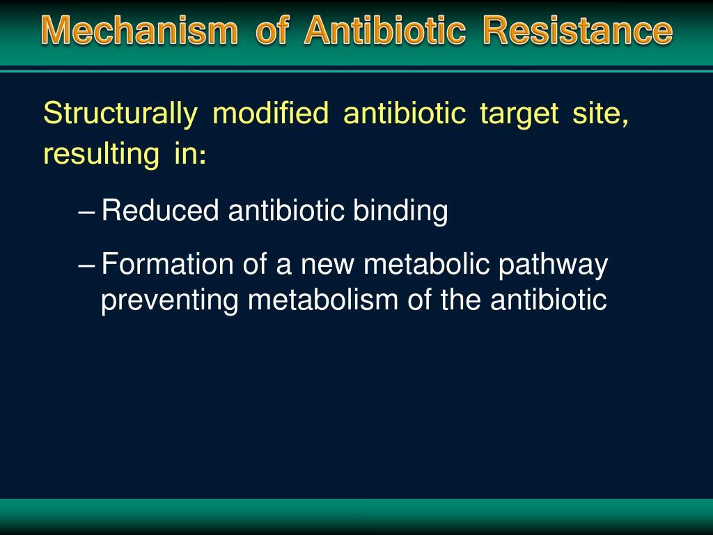 Mechanism of Antibiotic Resistance