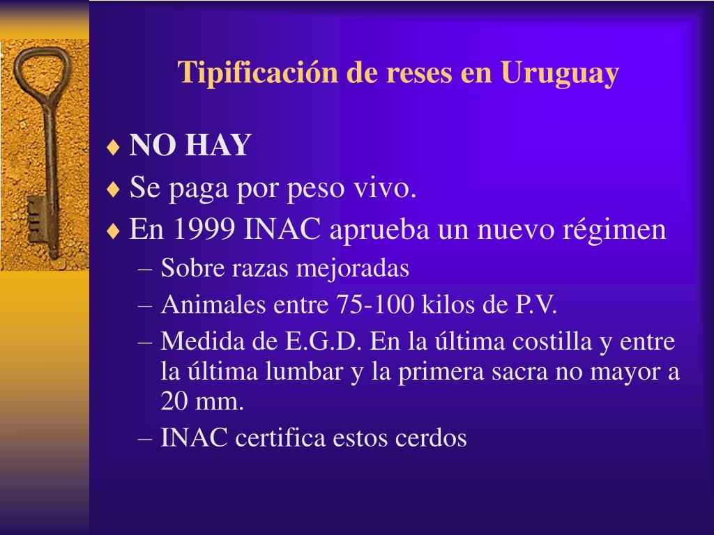 Tipificación de reses en Uruguay