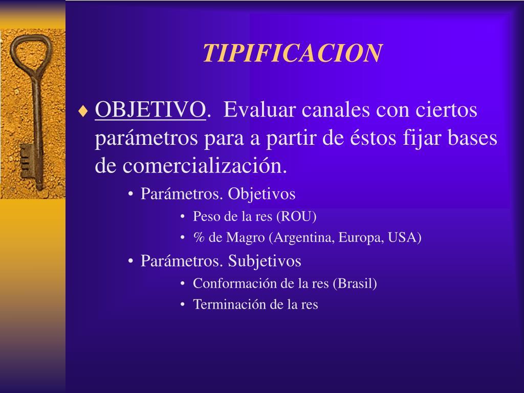 TIPIFICACION
