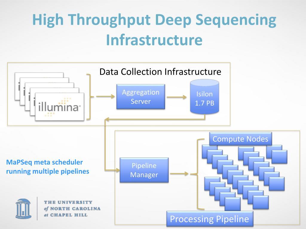 High Throughput Deep Sequencing Infrastructure