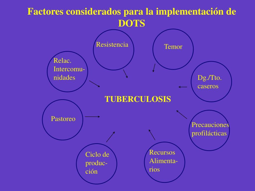 Factores considerados para la implementación de DOTS