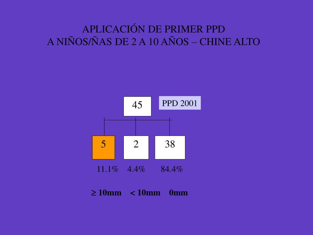 APLICACIÓN DE PRIMER PPD