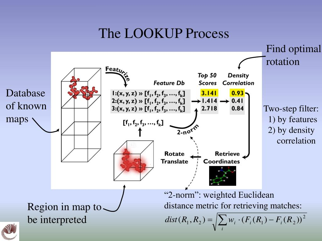 The LOOKUP Process